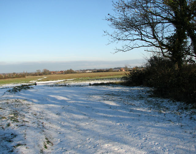 Snow on Hales Green Common