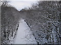 NZ2153 : Consett and Sunderland Railway Path by Les Hull