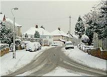 SO9096 : Sandringham Road, Penn, Wolverhampton by Roger  Kidd