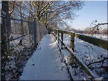 TQ2996 : Footpath, Trent Park, London N14 by Christine Matthews