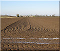 TL6074 : Harrowed field on Soham Fen by Hugh Venables