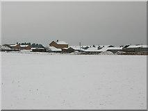 TR2955 : Hammill brickworks made pretty by snow! by Nick Smith