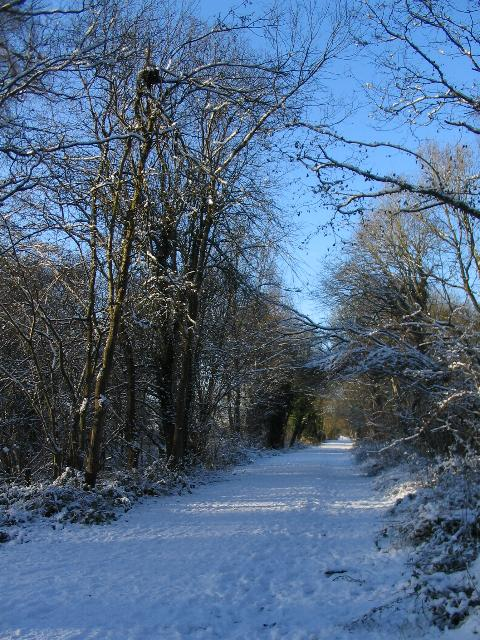 Kenilworth Greenway in the snow