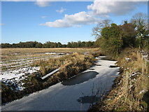 O1475 : The Mornington River, Co. Meath by Kieran Campbell