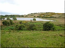 G9107 : Western end of Drumcunny Lough by Oliver Dixon