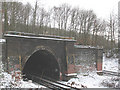 TQ4171 : Chislehurst East Tunnel: northern portal by Stephen Craven