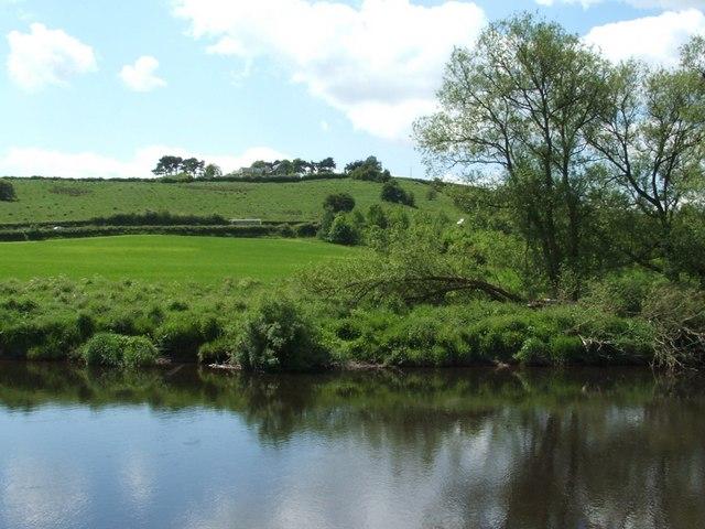 The River Clyde near Upper Carbarns Farm