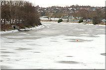 J3472 : The frozen River Lagan, Belfast (9) by Albert Bridge