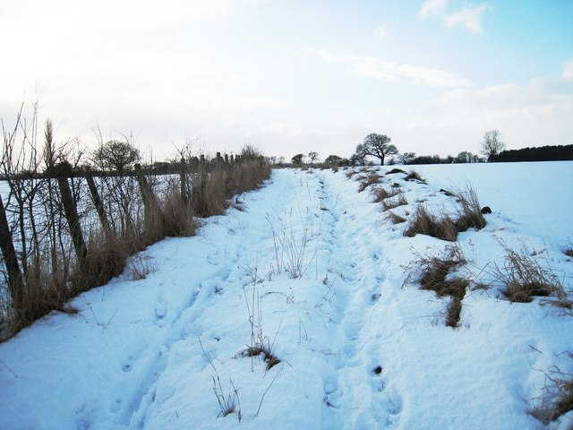 Footpath to Neasham Springs