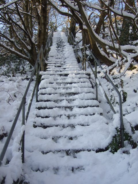 Steps from Shaw Carr to Owlers wood