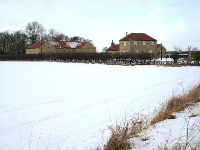 Snow-bound field near Neasham