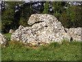 SP2930 : Rollright Stones by john shortland