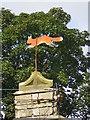 SD9788 : Flying Fox at Thornton Rust by Tom Howard