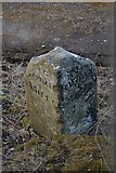 SE0026 : Milestone from Rochdale to Halifax Road by Phil Champion