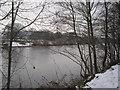 NY9265 : River Tyne at Hexham by Les Hull