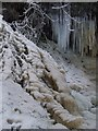 NS3074 : Ice in Devol Glen by Thomas Nugent