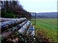 ST8605 : Fair Mile Plantation by Nigel Mykura