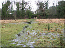 TG2407 : Flooded path to Whitlingham Lane by Evelyn Simak
