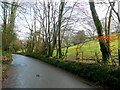 SX0960 : B3268 north from Lostwithiel by Jonathan Billinger