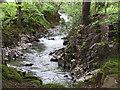 NY1700 : River Esk by N Chadwick