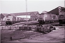 TQ2182 : Hymek class locomotives at Old Oak Common depot by Rob Purvis