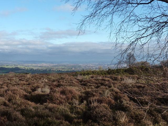 A view from Holy Moor