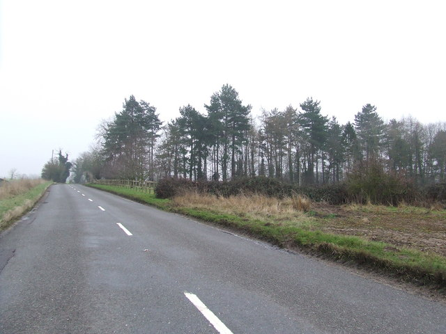 Upper Langsky Belt