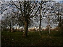 TQ2976 : Larkhall Park by Peter S