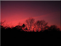 TL4658 : Winter sunset over Mill Road cemetery by Keith Edkins