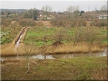 SY9287 : Piddle at Wareham by Derek Harper