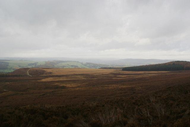 On Beeley Moor