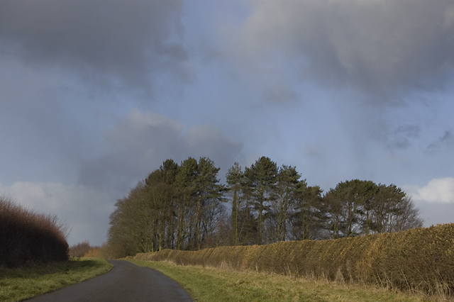 Towards Thornton Lane, Southburn
