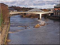 NZ2742 : River Wear, Durham by wfmillar