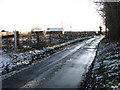 TM2894 : Shotesham Road past Beckett's Wood by Evelyn Simak