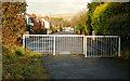 J4173 : The Comber Greenway, Dundonald (2) by Albert Bridge