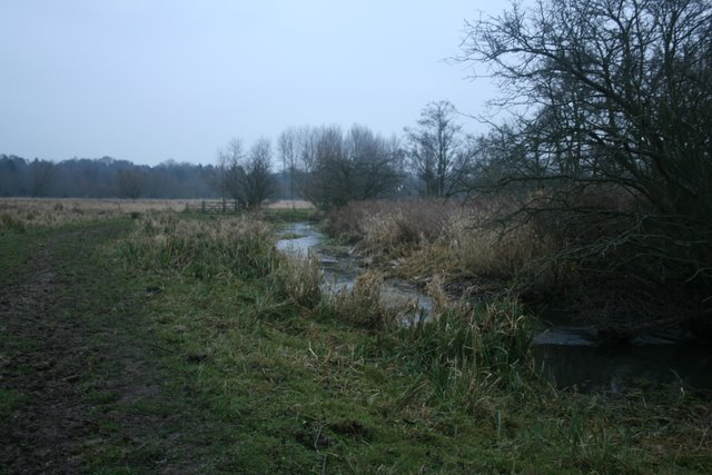 River Yare at Marston Marshes