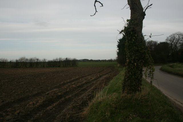 Unnamed road, south of Happisburgh