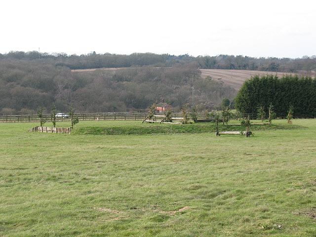 Mid Surrey Pony Club (1)