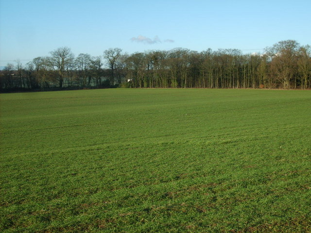 View to Scott's Bank