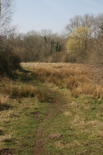 The Great Eastern Pingo Trail across Thompson Common