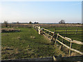 TL4595 : Paddocks by Thirties Farm by Hugh Venables