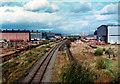 NS4966 : Railway line through Babcocks factory, from Wright Street bridge, 1977 by David Douglas