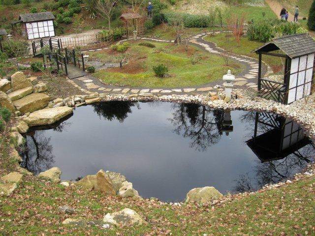 Kingston Lacy Japanese Garden
