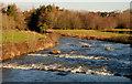 J3269 : The River Lagan at Shaw's Bridge, Belfast by Albert Bridge