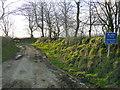 SM8527 : Byway from Lochmeyler by Jonathan Billinger