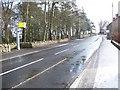 NU1301 : Speed Camera by David Clark