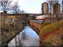 SD8913 : River Roch by David Dixon