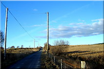 G7679 : Road at Casheltown by louise price