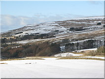 NY8048 : West Allen Dale - pastures south of Hartley Cleugh by Mike Quinn