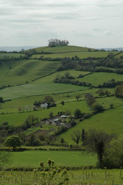 Kelston Round Hill from Lansdown